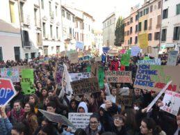"""""""Ci siamo rotti i polmoni"""": i Fridays for future e le piazze italiane"""