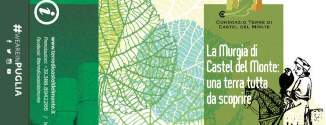 Andria – La Murgia di Castel del Monte: una terra tutta da scoprire