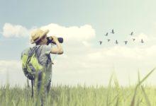 Parco Alta Murgia – Il 5 maggio giornata di birdwatching