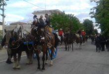 Fiera d'Aprile: successo a Montegrosso. VIDEO e FOTO