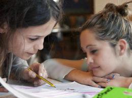 Assistenza scolastica specialistica nella Bat: servizio interrotto, lavoratori a casa