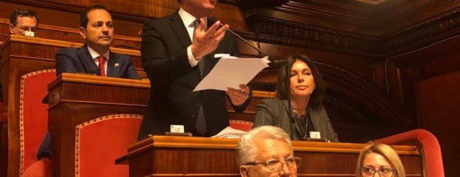"""Covid-19, Sen Damiani (FI) : """"Garanzia dello Stato sui prestiti delle banche alle imprese"""""""