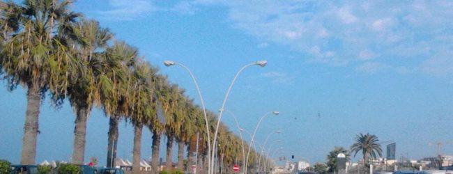 Barletta – Litoranea di Ponente, presto nuovo impianto di illuminazione
