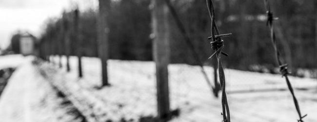 """""""Novecinquesei. Storie della resistenza di un soldato"""": la prigionia dell'ufficiale Francesco Grasso"""
