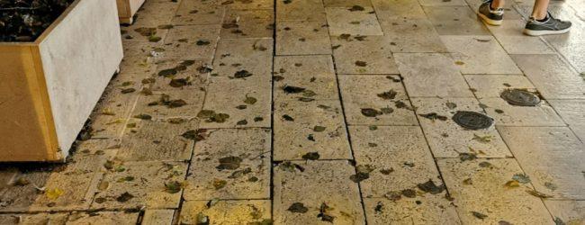 Andria – Via De Gasperi, attenzione al marciapiede sconnesso: rischio cadute. FOTO