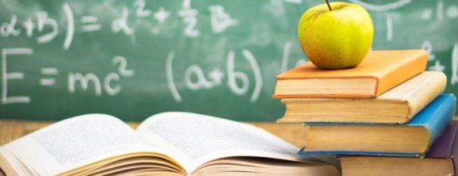 Barletta – Bando per borse di studio rivolto al personale in servizio in asili e scuole per l'infanzia