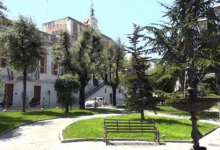 Andria – Piazza Umberto I° (Municipio): interventi sulle querce