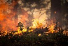 Barletta – Allarme cattivi odori nell'aria, la cittadinanza si ribella