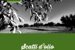 """""""Scatti d'Olio"""": le modalità per partecipare al contest fotografico"""