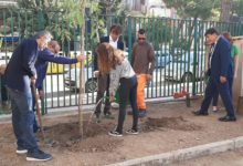 Trani – PiantumAzione degli alberi alla scuola Baldassarre
