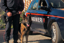 Andria – Controlli serrati dei Carabinieri: pusher arrestato in via Cavallotti e due persone denunciate