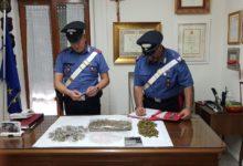 Spacciatori di tutte le età – Arrestata una 59enne che nascondeva la droga nel congelatore