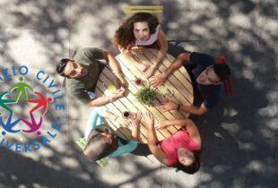 """Barletta – Bando selezione 4 volontari servizio civile """"#librialcentro"""": calendario colloqui"""
