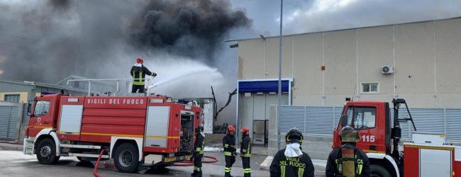 Barletta – Nota di Arpa Puglia sugli interventi compiuti dopo l'incendio della Dalena