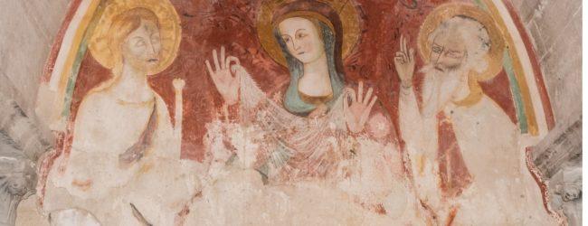 Trani – Immagini mariane tra il Castello Svevo e la Cattedrale
