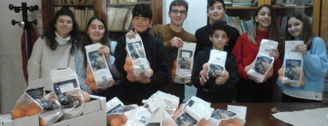 """Trani – Anche alla Baldassarre è il tempo delle arance """"anti cancro"""""""