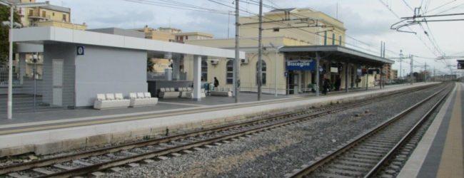 Servizio disabili nelle stazioni di Bisceglie e Bari Santo Spirito