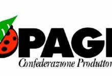 Covid-19, Copagri Puglia lancia l' allarme per il settore ortofrutticolo, zootecnico e florovivaistico