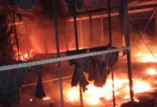 Barletta – Cattivi odori nella zona industriale, scoperto incendio di un vivaio nelle campagne di Andria