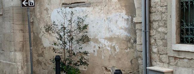 """Trani – Centro Storico, """"Trani Vera"""" chiede la riapertura di via D'Angiò"""