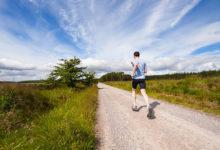 Puglia – Nuova ordinanza su attività sportive all'aria aperta, addestramento animali e manutenzione camper