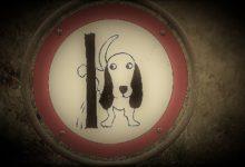 Cacche e pipì per le strade: colpa dei cani o dei padroni?