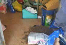 """Andria – Furto a """"Casa Britex"""": sottratti cibo, galline e i cani della proprietaria. """"Ridatemeli, sono la mia vita"""". FOTO"""