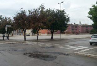 """Mercato settimanale, Caracciolo (PD) : """"Per quanto altro tempo Barletta sarà la città delle attività improduttive?"""""""