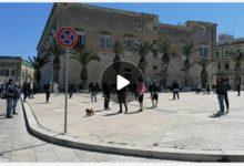 Trani – Ristoratori in piazza: ascoltateci! VIDEOINTERVISTE