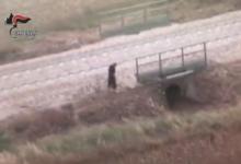 Spinazzola – Ritrovato rumeno scomparso martedì scorso: era scalzo sulla vecchia tratta ferroviaria. VIDEO